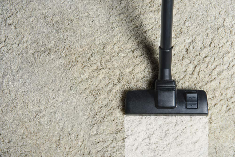 Why Should You Be Cleaning Your Carpets in Winter